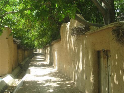 Day 14: Sirjan – Shiraz