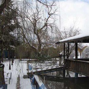 motevali-bashi-hotel-in-winter
