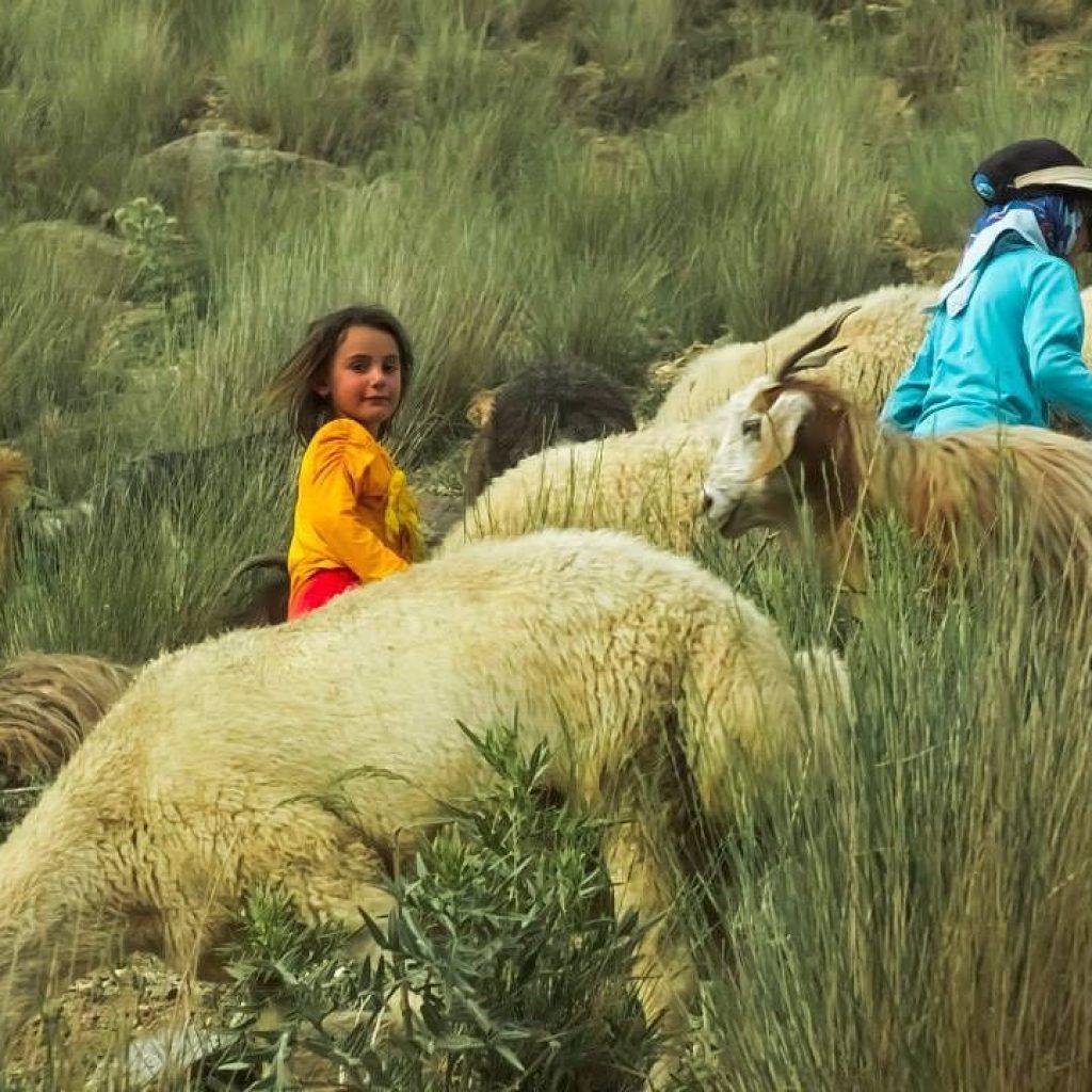 Day 7: Masuleh – Ardabil