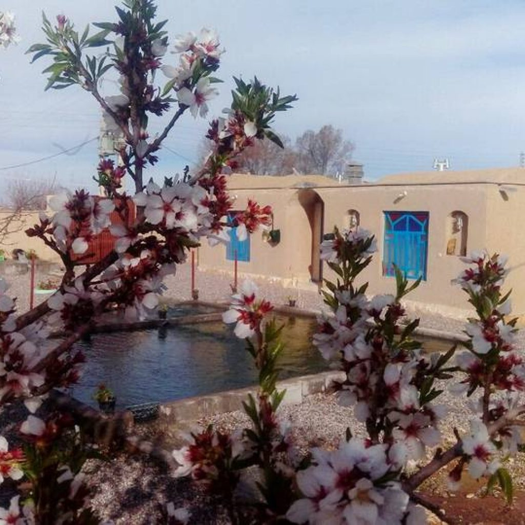 rivas-babak-ecolodge-homestay-hostel