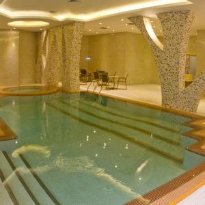 Royal hotel.shiraz,pool